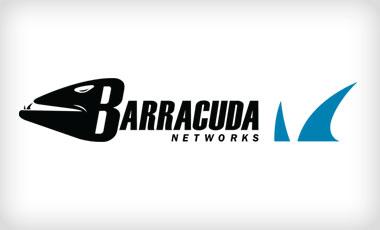 Como gestionar la seguridad informatica de su empresa con Barracuda Networks y Antimalwares