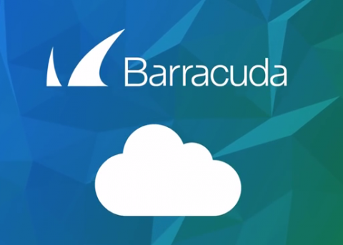 Seguridad informatica aplicada a las empresas con Barracuda y Antimalwares