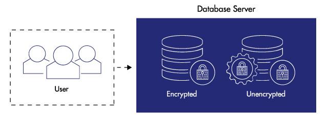 Servicios de encriptacion de datos para empresas