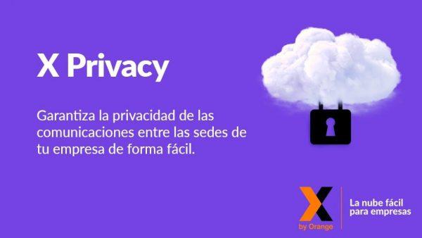 X Privacy 4G