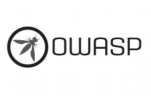 Vulnerabilidades OWASP