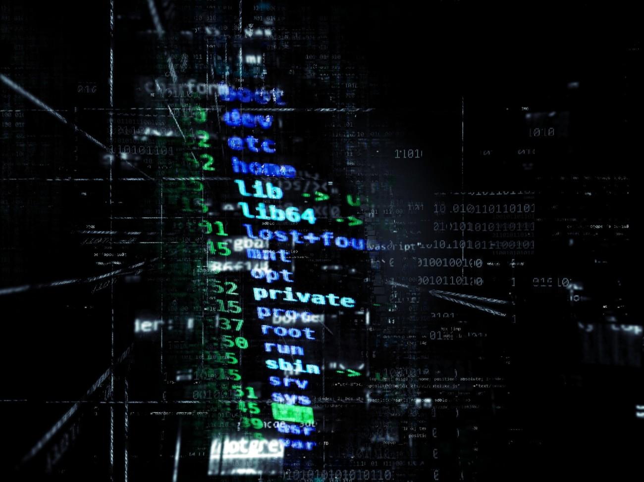 Vulnerabilidades de software